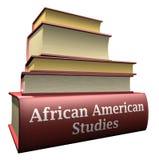 Livros da instrução - estudos do americano africano Fotos de Stock Royalty Free