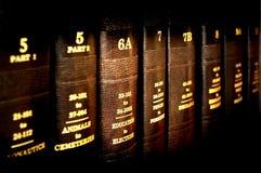 Livros de lei na instrução Foto de Stock Royalty Free