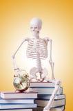 Livros de leitura de esqueleto contra o inclinação Fotos de Stock