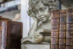 Livros de leitura do anjo imagem de stock royalty free