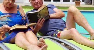 Livros de leitura superiores dos pares na cadeira de sala de estar vídeos de arquivo