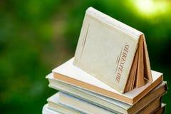 Livros de Shakespeare empilhados acima Fotografia de Stock