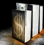 Livros do dinheiro Foto de Stock