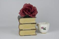 Livros dos livros dos livros imagens de stock royalty free