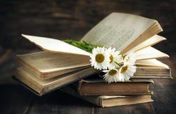 Livros e camomilas do vintage no fundo de madeira Imagem de Stock