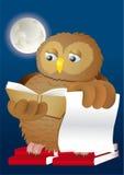 Livros e lua da coruja Fotos de Stock Royalty Free