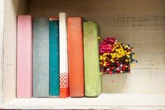 Livros em um tronco Fotos de Stock
