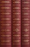 Livros em uma prateleira Imagem de Stock