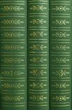 Livros em uma prateleira Imagens de Stock
