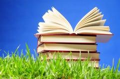 Livros na grama. Conceito educacional. Fotografia de Stock