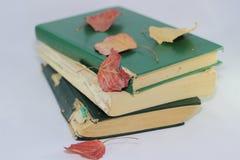 Livros velhos e folhas de outono Foto de Stock