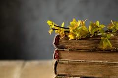 Livros velhos em uma tabela de madeira Ramos das folhas amarelas nos livros fotos de stock royalty free