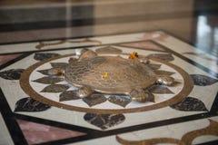 Livslängdsköldpadda, Indien Fotografering för Bildbyråer