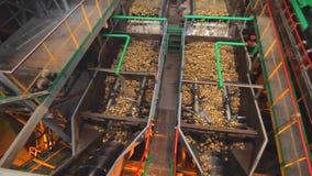 Livsmedelsförädlingutrustning jordbruks- industri Sockerfabriksprocess arkivfilmer