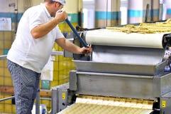 Livsmedelsindustri - ljusbrun produktion i en fabrik på en transportör är royaltyfri foto