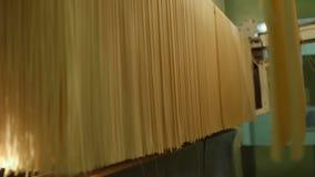 Livsmedelsproduktion av pasta eller nudeln lager videofilmer