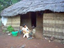 Livsmiljö i Guinea Bissau Afrika Arkivfoto