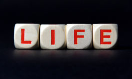 livstid Arkivbild
