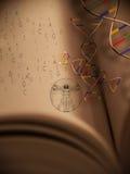 livstid för 2 bokgenetik Arkivbilder