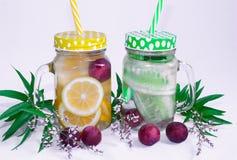 1 livstid fortfarande Dricka frukt, apelsiner, gurkor, bär i exponeringsglas rånar med ett handtag arkivbilder