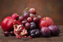 1 livstid fortfarande Färger och anstrykningar med höstfrukt Arkivfoton