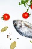 1 livstid fortfarande Mat Tomater och fisk Royaltyfri Fotografi