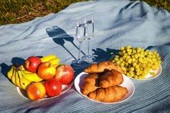 1 livstid fortfarande picknick med sund mat Royaltyfri Bild