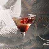 livstid martini fortfarande Royaltyfri Foto