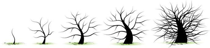 livstid stages treen royaltyfri illustrationer