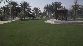 Liwa旅馆的疆土磨擦Al Khali沙漠阿联酋股票英尺长度录影的 影视素材