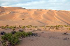 Liwa sand dunes Stock Photos