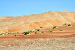 Liwa sand dunes Stock Image