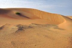 Liwa sanddyn & krusningar Royaltyfri Foto