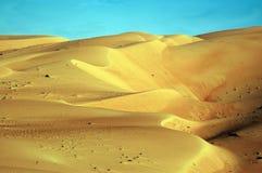 Liwa sanddyner Arkivfoton