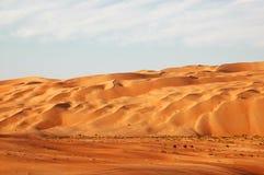 Liwa sanddyner Arkivbild
