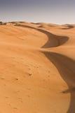 Liwa sander, Abu Dhabi Royaltyfri Fotografi