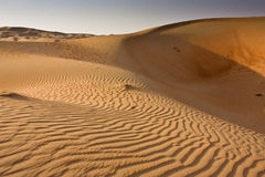 Liwa sandpapprar Abu Dhabi Royaltyfri Foto