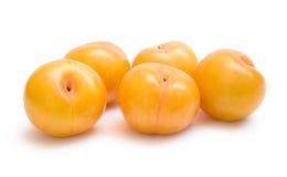 śliwki kolor żółty Zdjęcie Stock