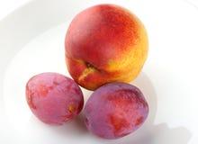 śliwki nektaryn 2 zdjęcie royalty free