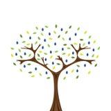 śliwkowy drzewo Zdjęcia Stock