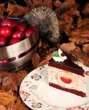 Śliwkowy klucha tort Zdjęcie Royalty Free