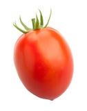Śliwkowy pomidor Fotografia Royalty Free