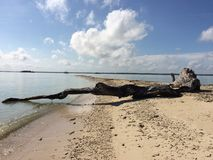 Liwungan wyspa Fotografia Stock
