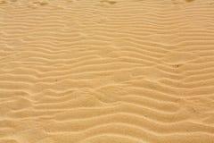 Lixe testes padrões após o vento na reserva natural, parque natural, Corralejo, Fuerteventura, Imagem de Stock Royalty Free