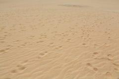 Lixe testes padrões após o vento na reserva natural, parque natural, Corralejo, Fuerteventura Foto de Stock