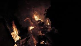 Lixo ausente de queimadura da chama vídeos de arquivo