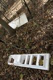Lixo - despejando na região selvagem fotografia de stock royalty free