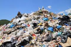 Lixo e gaivotas Imagem de Stock Royalty Free