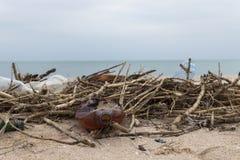 Lixo na praia Garrafas e juncos plásticos vazios na areia Poluição ambiental fotografia de stock royalty free