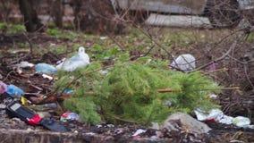 Lixo na rua video estoque